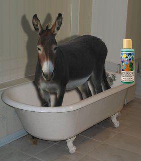 Donkey in the bath tub! in 2019   Donkey funny, Cute ...