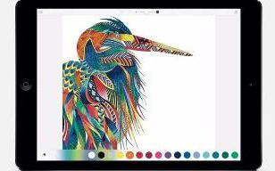 The Best 8 Apps For IPad Pro Adult Colouring Book Phenomenon Is Showing No Signs