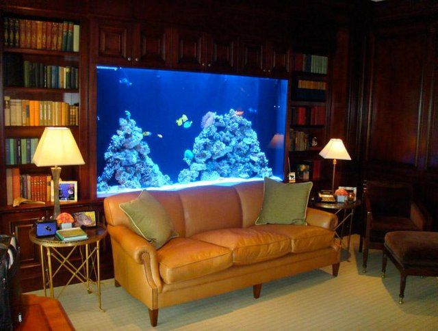 Living Room Decorating Ideas Fish Tank living room with an aquarium wall in the house - home room designs