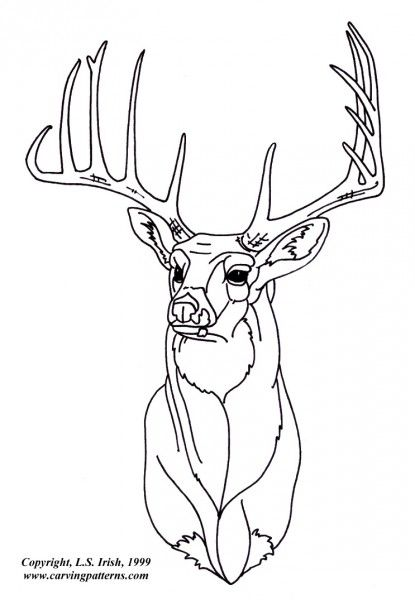 Deer wood burning patterns images for Wood burning templates free download