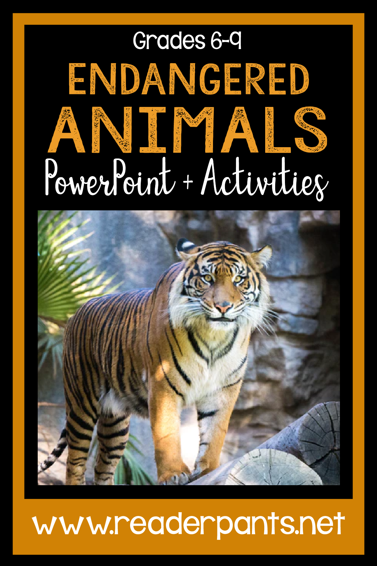 Endangered Animals Powerpoint And Research Activity