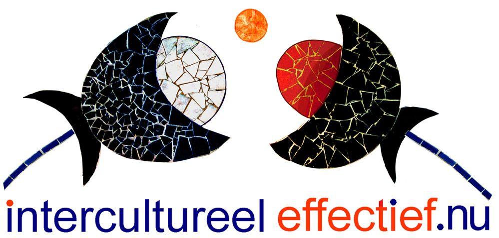 intercultureel-effectief.nu