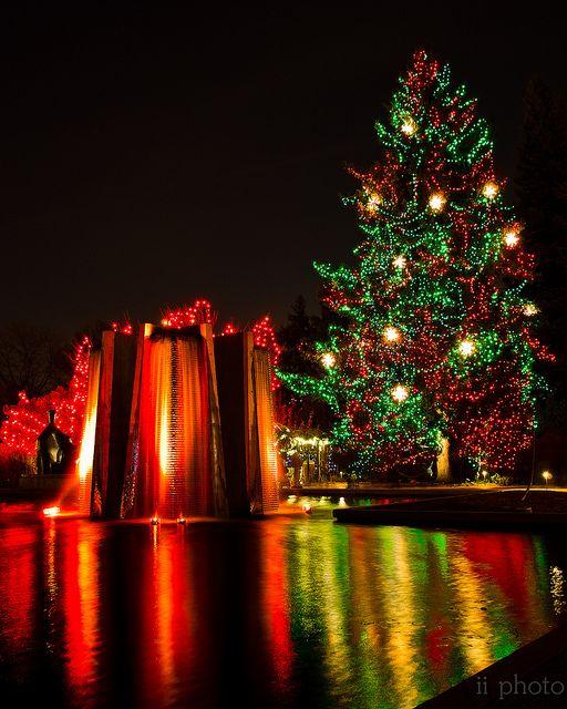 Lamps Colorado Springs: Holiday, Denver Activities, Denver