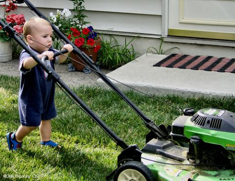 How To End Complaining Over Chores Lawn Care Tips Lawn Care