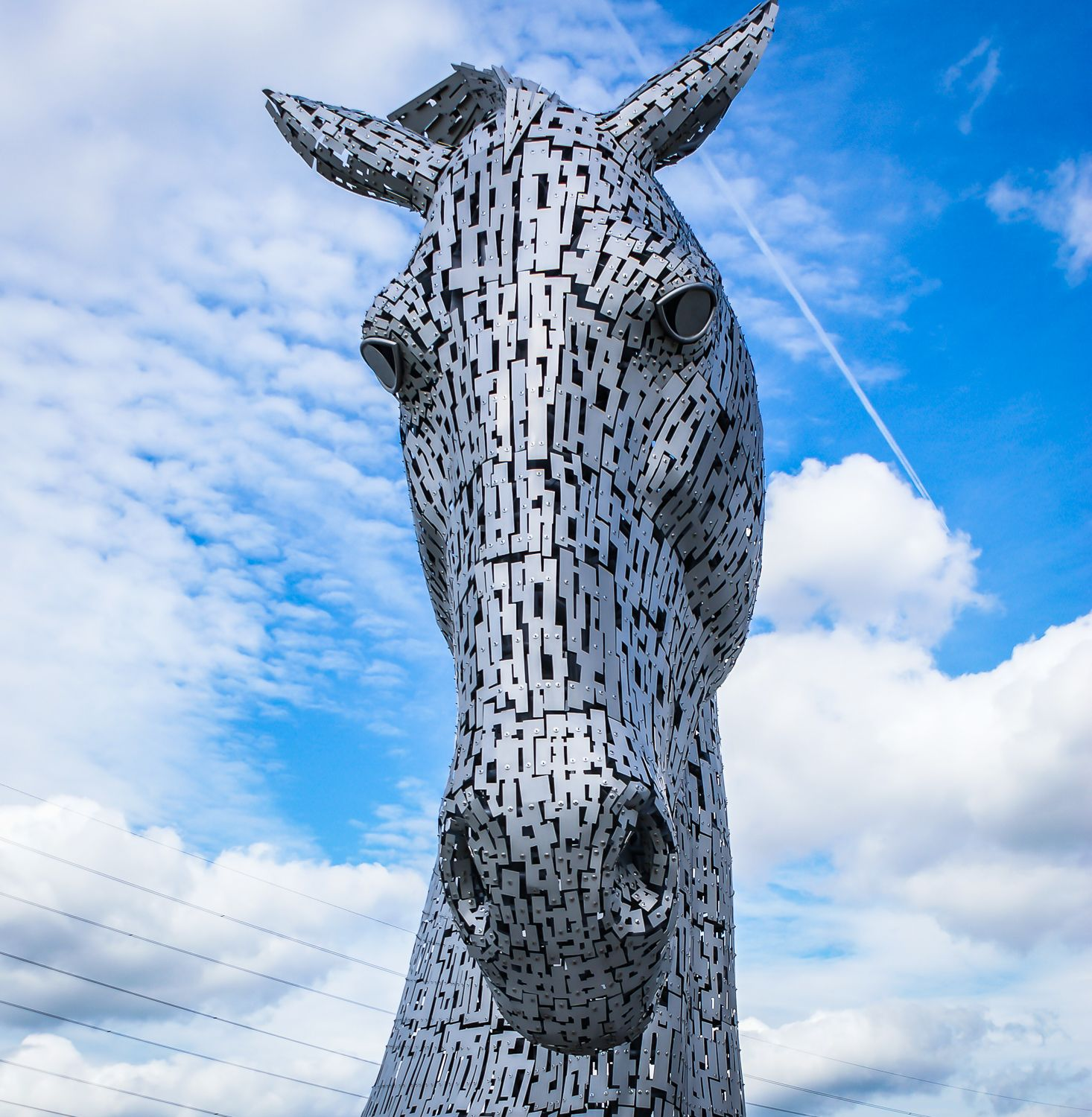 Kelpies Lion sculpture, Sculpture, Statue