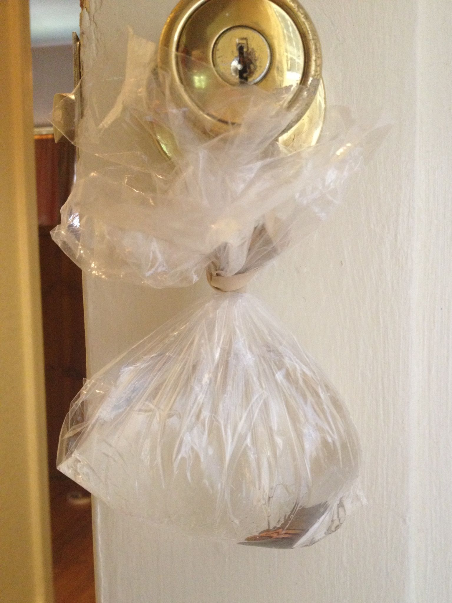 How To Keep Flies Out Of The House Put A Few Pennies In A Bag Of Water And Hang On