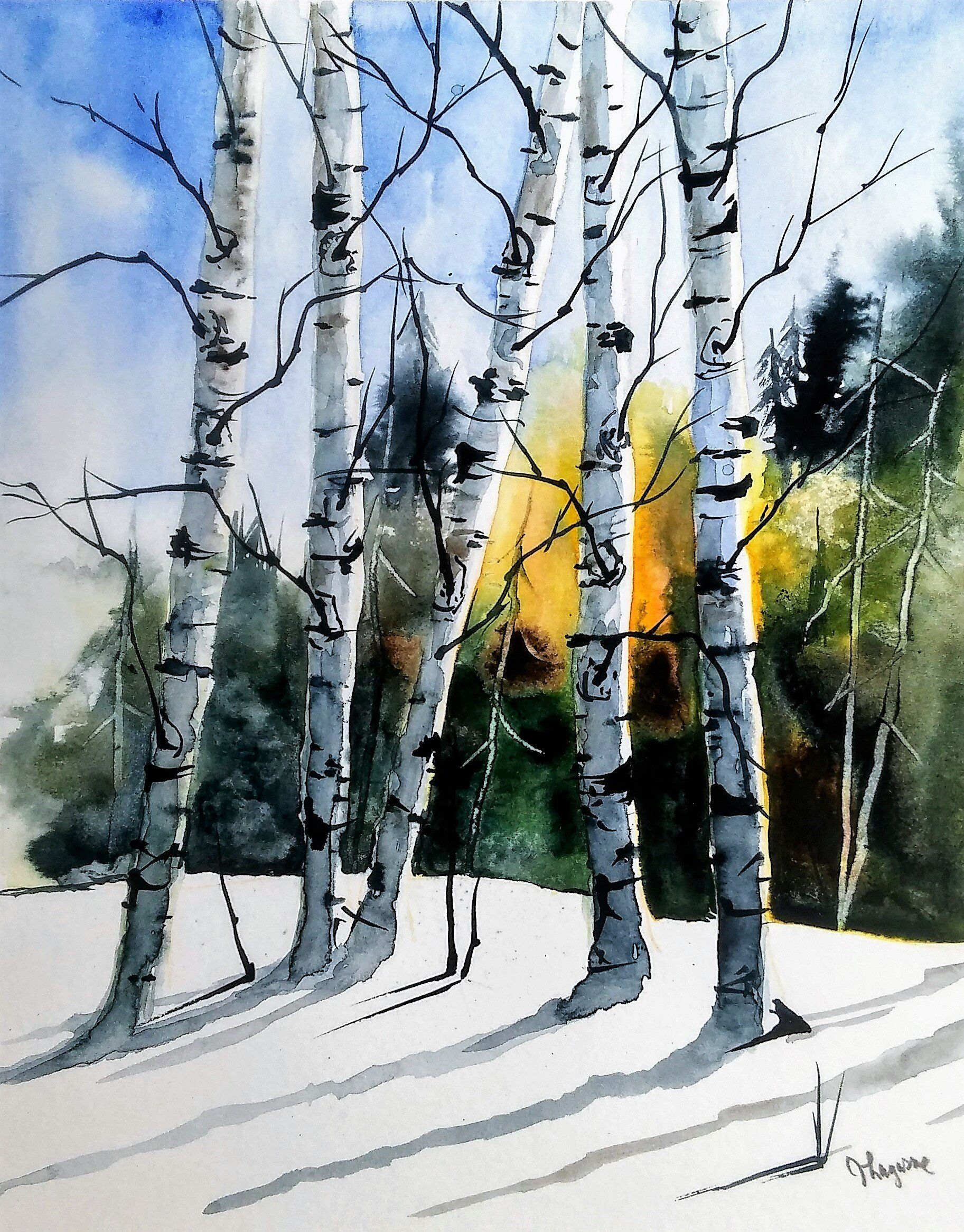 Original Watercolour Painting By Jim Lagasse Silver Birch Etsy