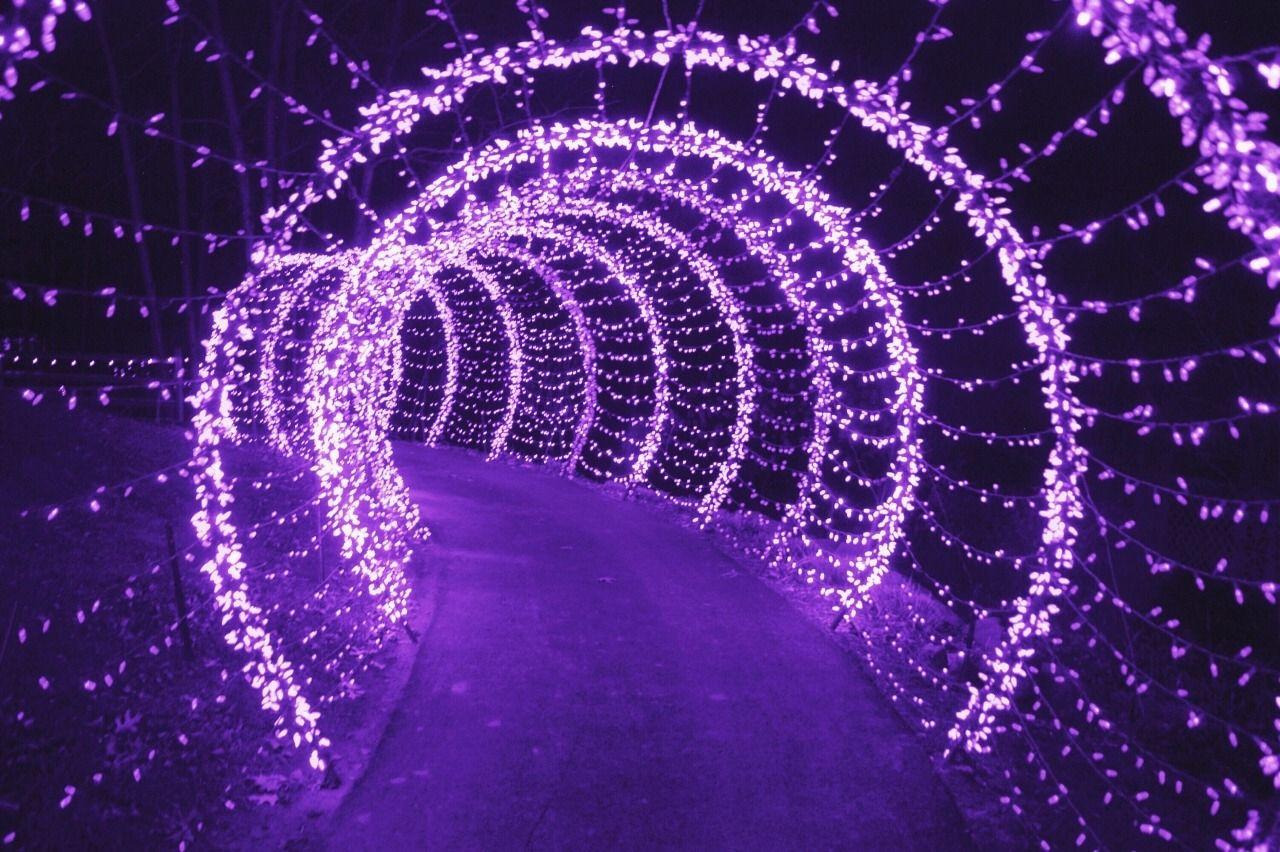 Aesthetic Pastel Purple Sky