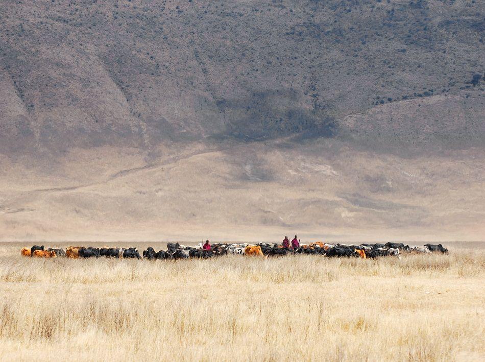 {photo of the day} Incredible Maasai - N'Gorongoro, Tanzania