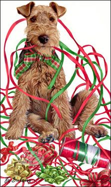 """Welsh Terrier Christmas cards are 8 1/2"""" x 5 1/2"""" and come in packages of 12 cards. One design per package. All designs include envelopes, your personal message, and choice of greeting. Select the greeting of your choice from the drop-down menu above. Add your personal message to the Comments box during checkout."""