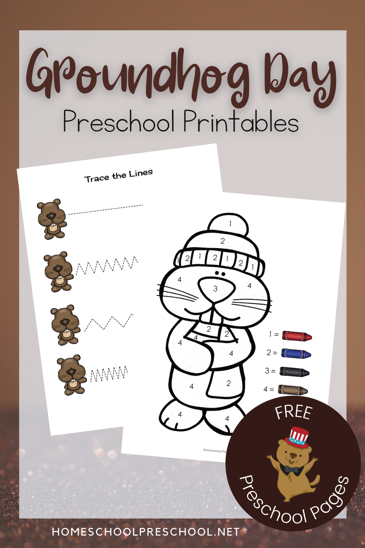 Groundhog Day Printable Activities For Preschoolers In 2021 Groundhog Day Groundhog Day Activities Preschool Activities [ 1500 x 1000 Pixel ]