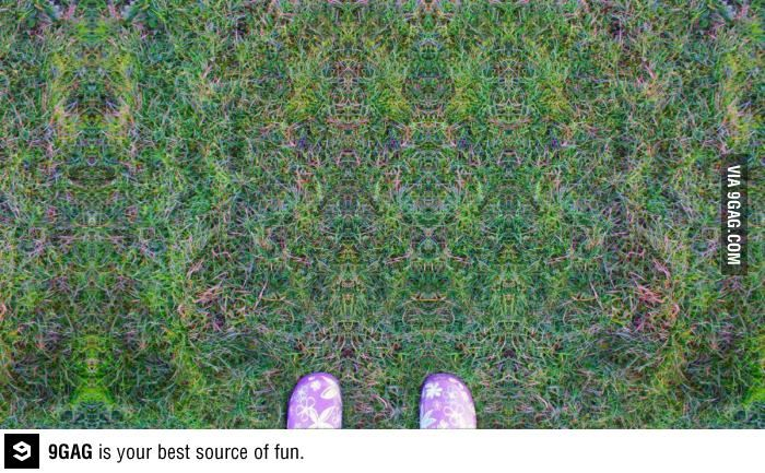 If you have ever wondered what you actually see on LSD, this is the most accurate picture