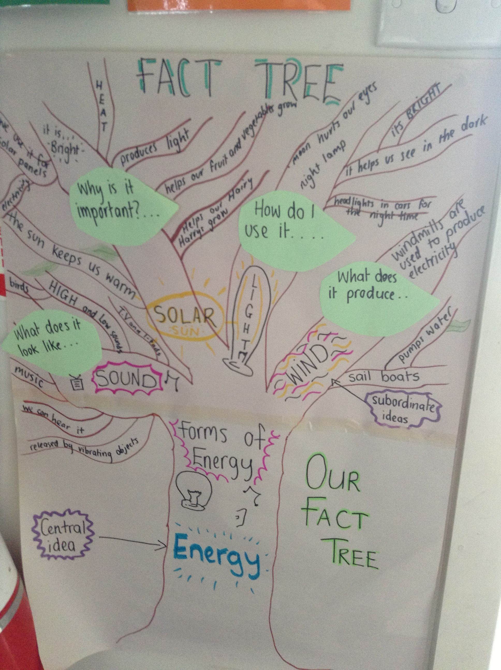 Fact tree different forms of energy please like httpwww fact tree different forms of energy please like http form ofanchor chartseinsteinelementary ccuart Images