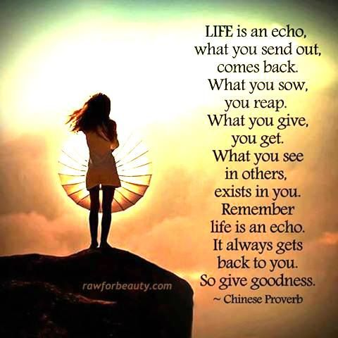 #Life Is An Echo, What You Send Out Comes Back. What You Sow