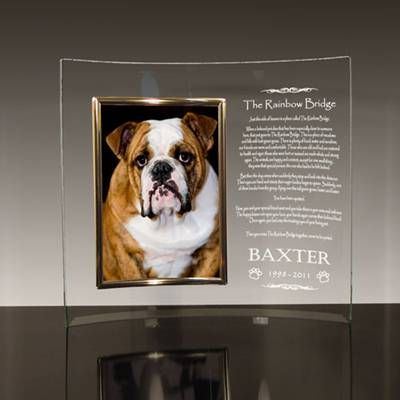 rainbow bridge poem glass frame for dogs. Even looks like my sweet, sweet Delta!  I miss you so much!!!!!