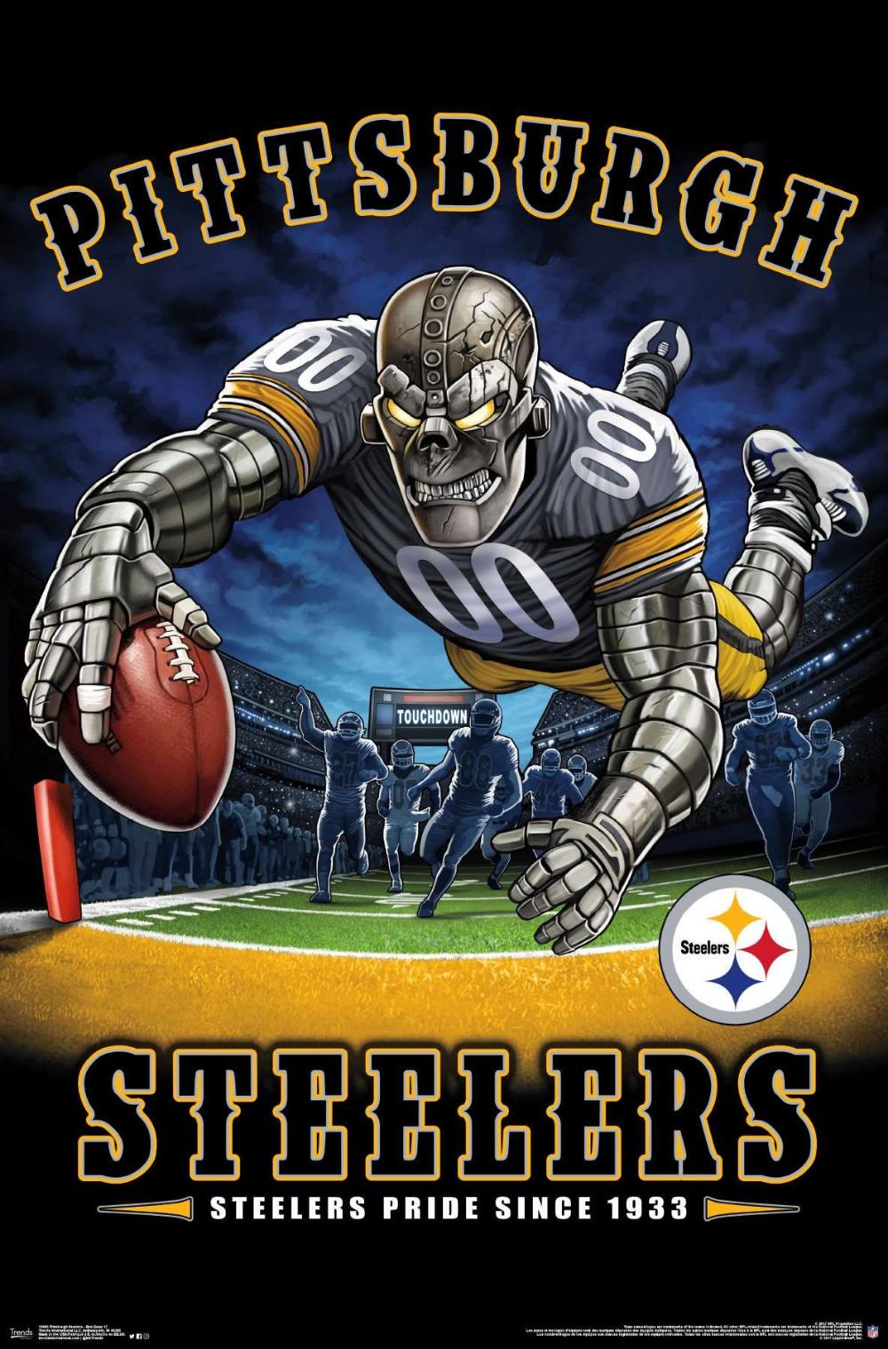 NFL Pittsburgh Steelers End Zone 17 Pittsburgh