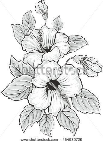 Hibiscus Flower With Images Flower Drawing Flower Sketches