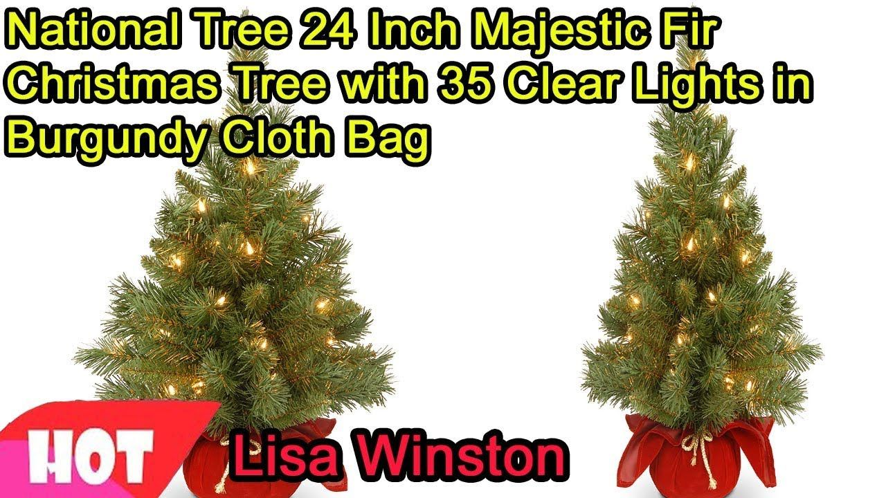 National Christmas Tree 2019.National Tree 24 Inch Majestic Fir Christmas Tree With 35