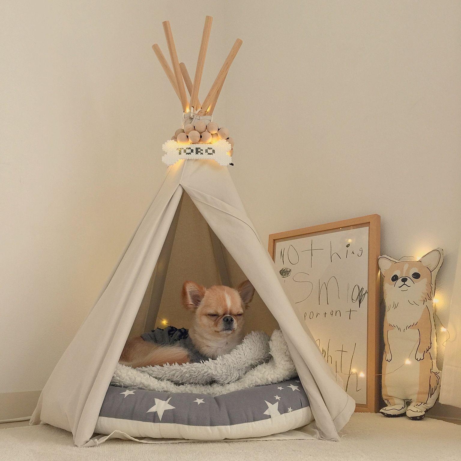 可愛くって仕方ない ペットと一緒に住む 一緒に暮らすためのインテリアコーデ集 Folk ペットと暮らすインテリア ペット ドッグベッド