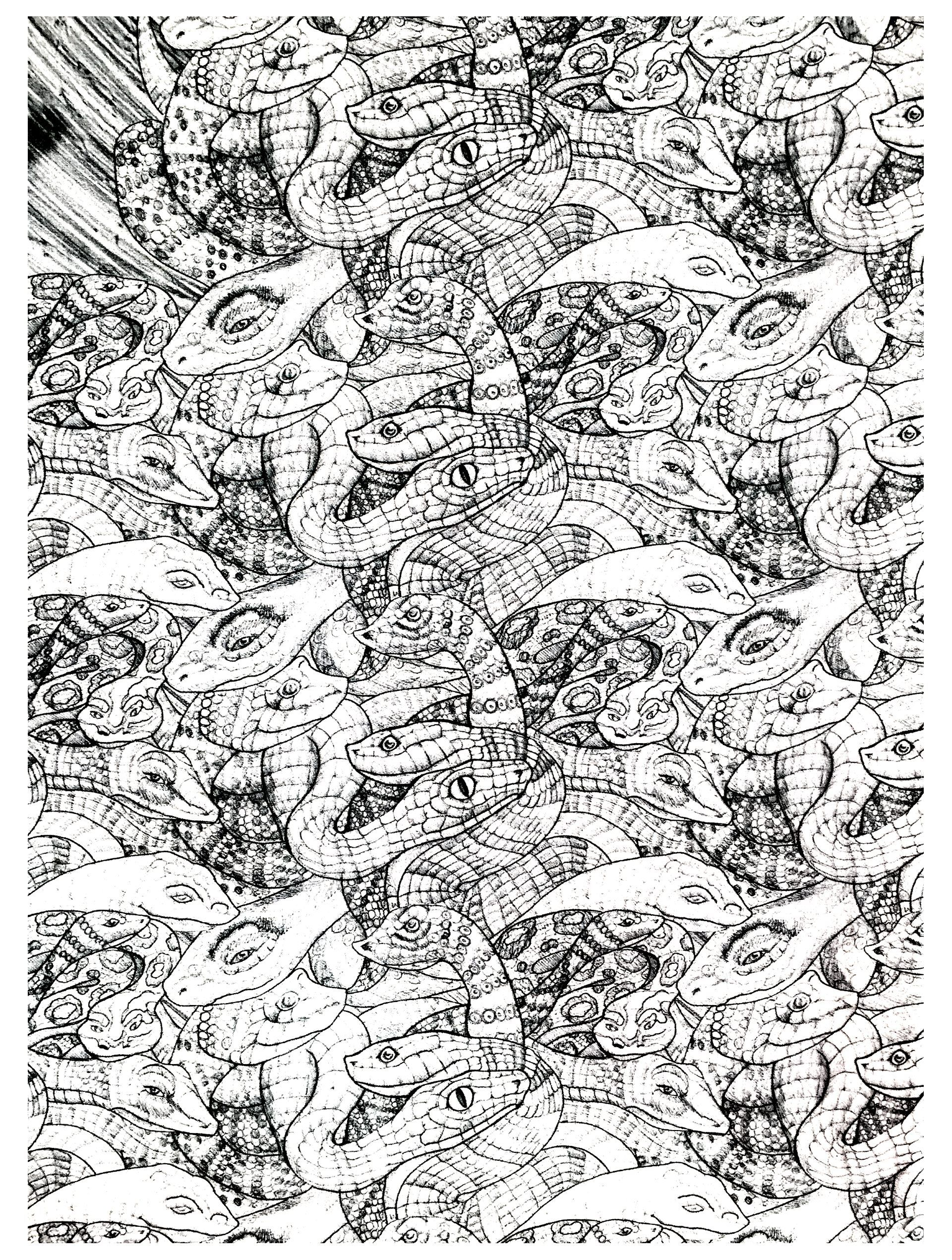 free coloring page coloring adults snakes complex 2 very - Coloring Pages Of Snakes 2
