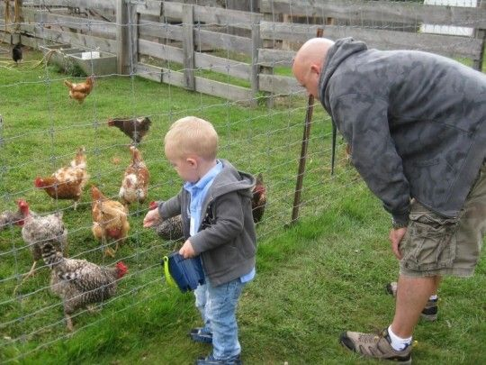Toddler Time on the Farm Waltham, Massachusetts  #Kids #Events