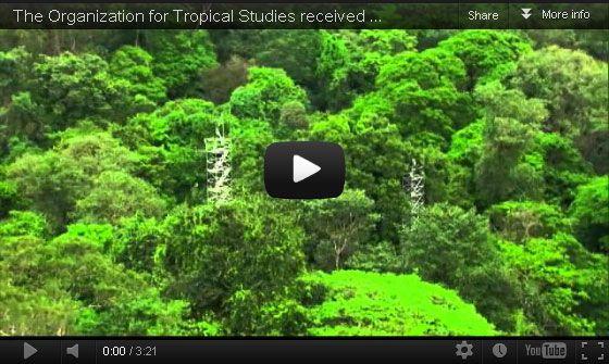 Organization For Tropical Studies La Selva Biological Station Tropical Rainforest Places To Go Tropical