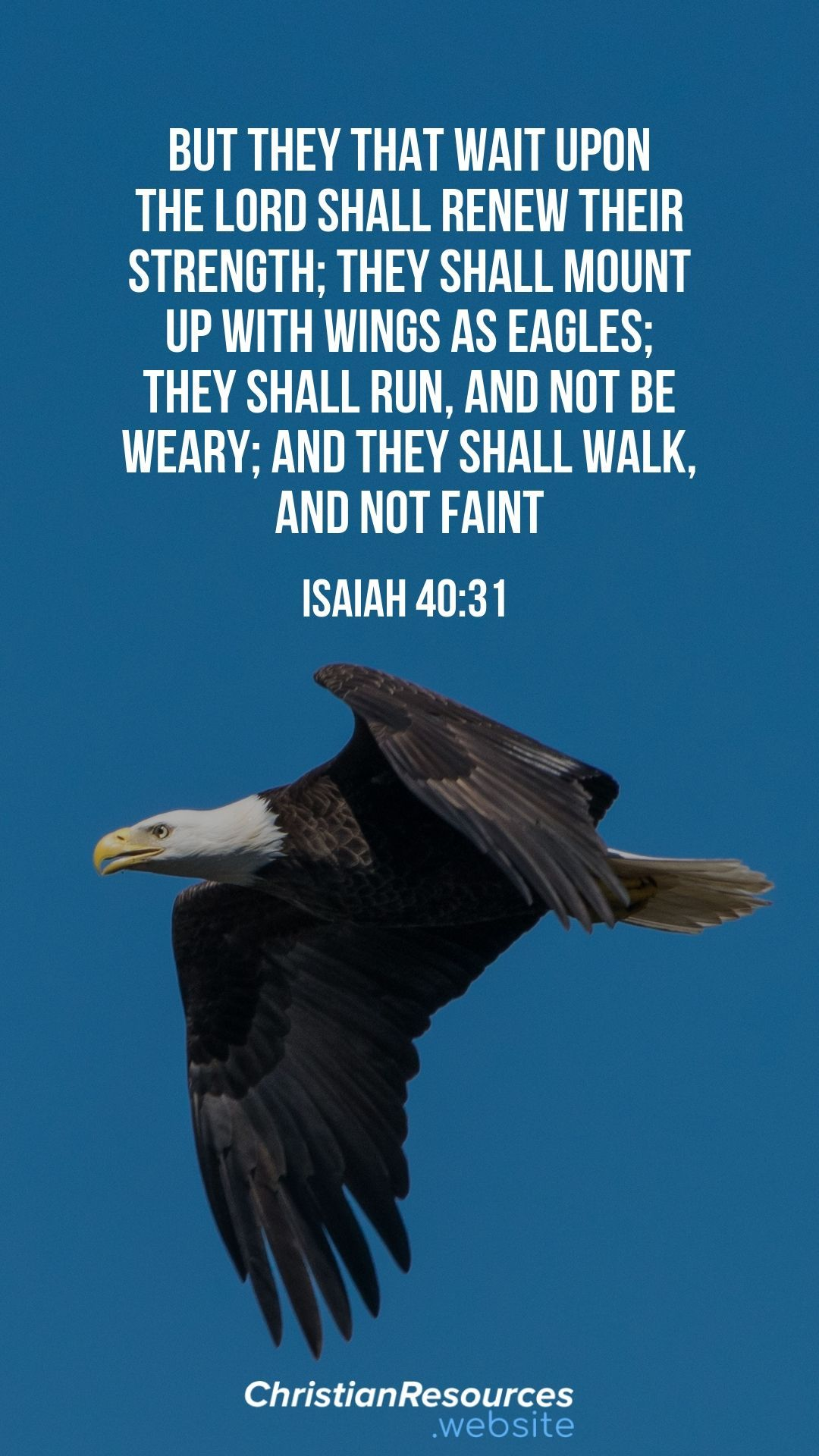 But they that wait upon the Lord shall renew their strength; they shall mount up with wings as eagles; they shall run, and not be weary; and they shall walk, and not faint (Isaiah 40:31). #BibleVerses #BibleQuotes #ScriptureQuotes #GodQuotes #BibleQuotesInspirational #ChristianResources #Bible #Quotes #Encouragement