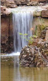a6cc1d4f6b004d2c568c611a639de6ea - Anthony Archer Wills Designing Water Gardens
