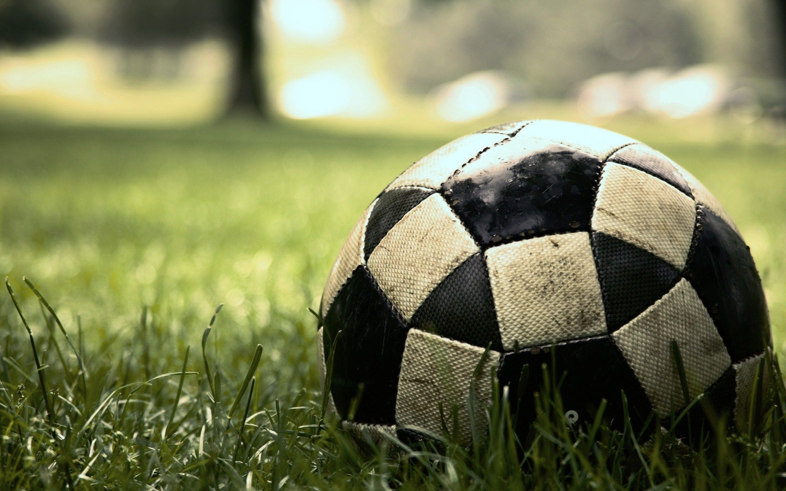 Pictureoftheday Photography Grass Ball Soccer Game Sport At Sevencentric Soccer Ball Soccer Football Wallpaper
