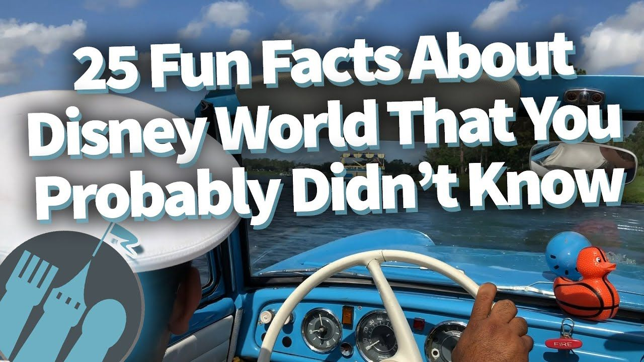 Amazing Facts You Didnt Know About Disney Movies | Others
