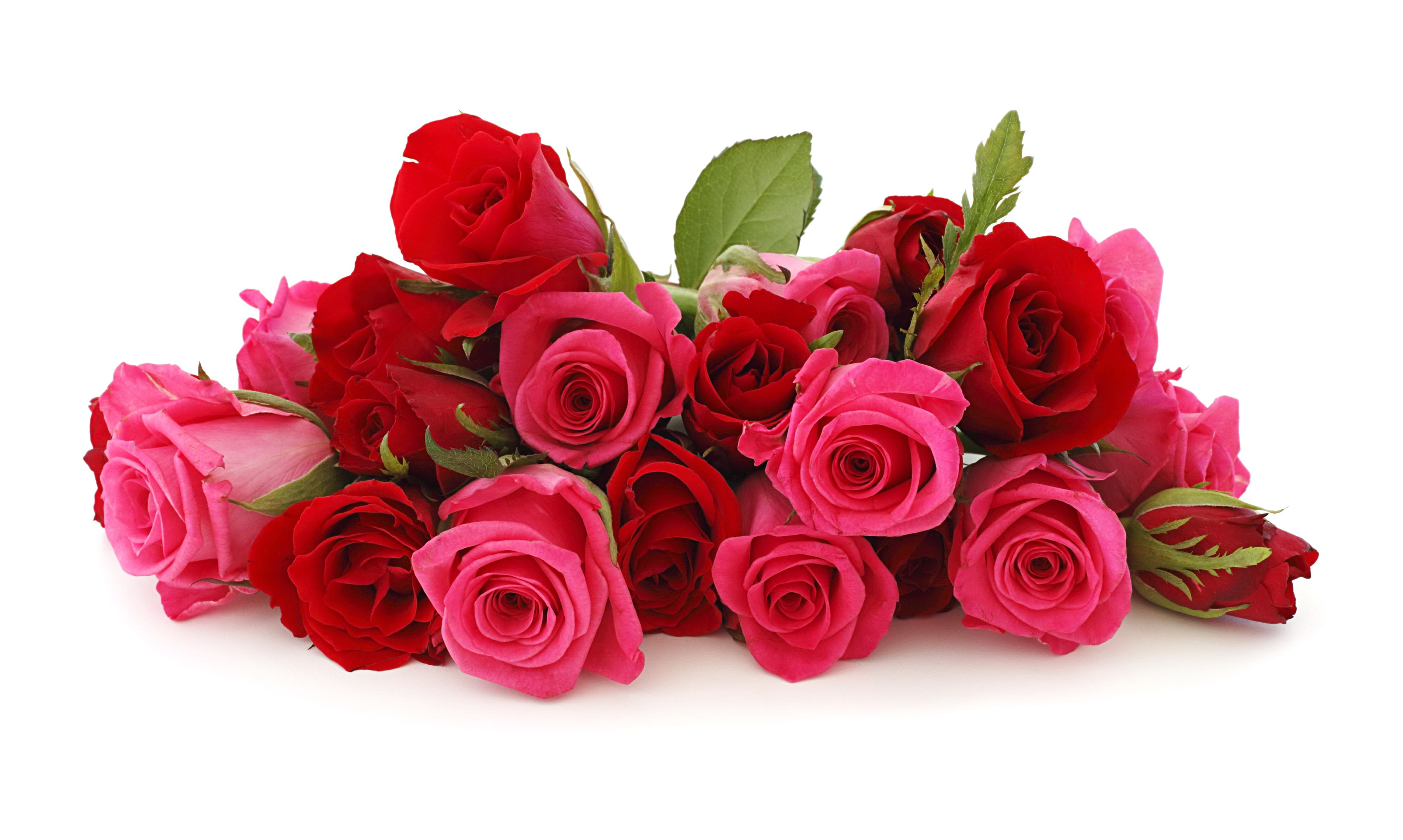 Cute Red And Pink Rose Flowers Bouquet Screensavers For Free