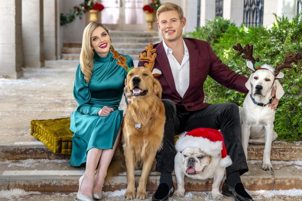 Christmas Movies 2020 Hallmark Netflix Lifetime Uptv Movie Info In 2020 Christmas Movies Hallmark Christmas Movies Movies