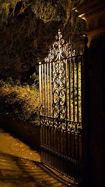 Wrought iron gate for the entrance to my secret garden - but  want to design my own gate.
