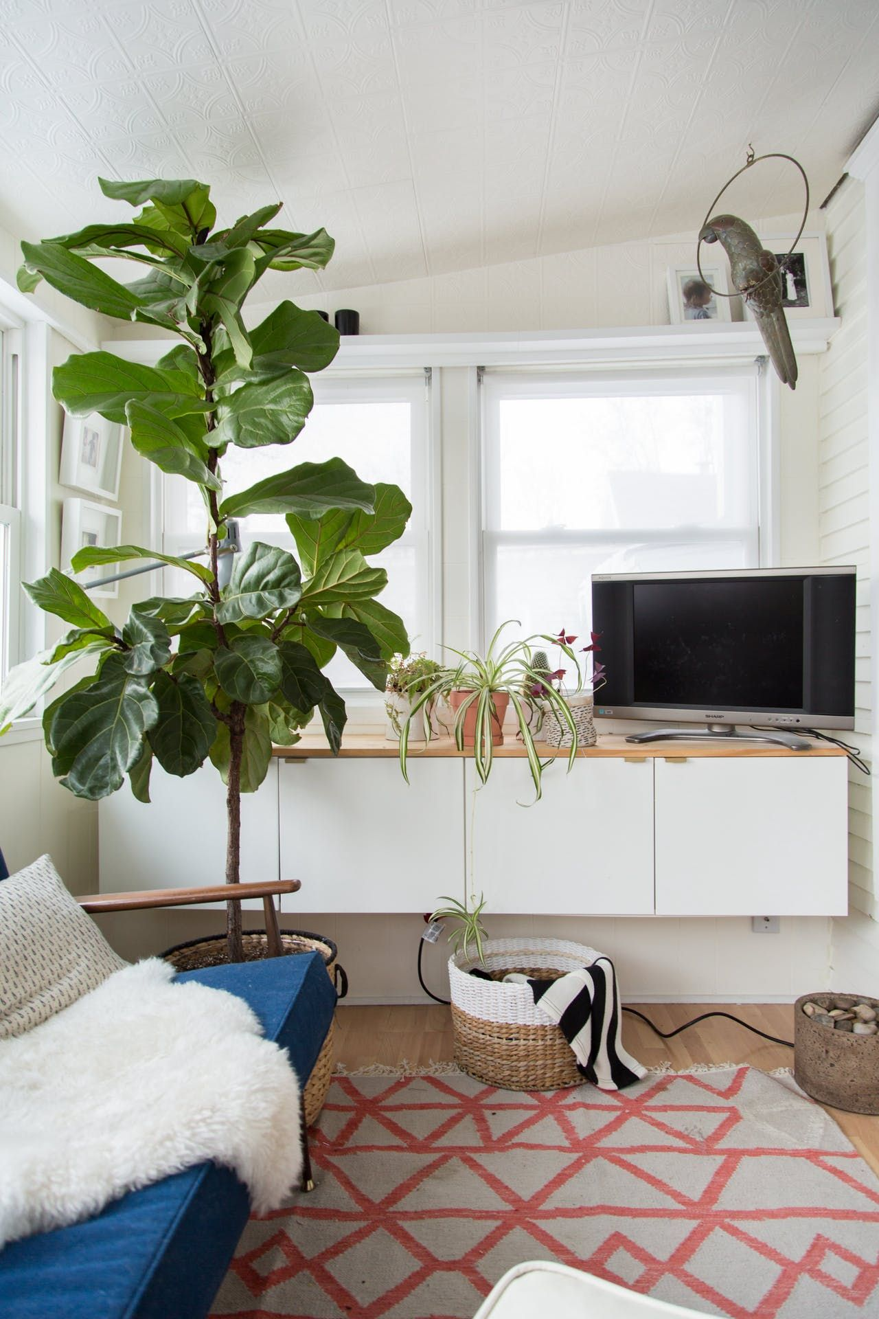 A 106-Year-Old Minneapolis House with Chill Scandinavian Vibes ...