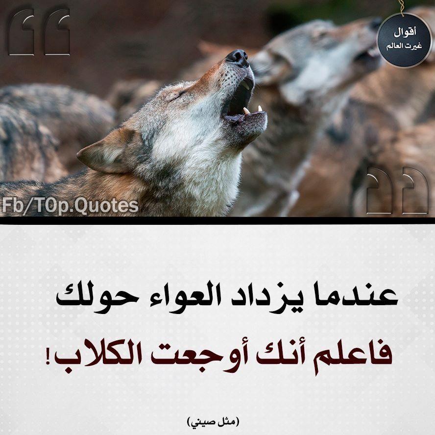 Pin By Azhar Alkenany On صور