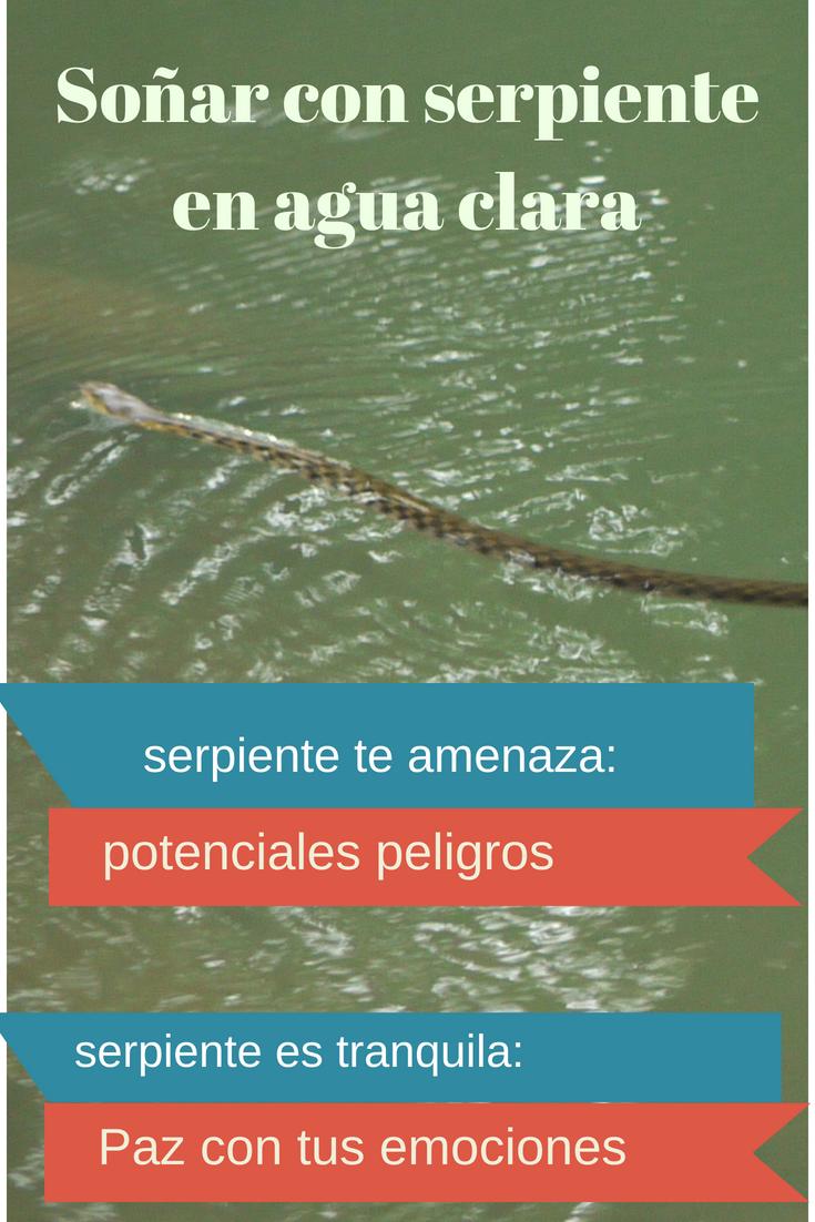 Significados De Soñar Con Serpiente En Agua Clara Limpia Serpientes Agua Interpretacion De Los Sueños