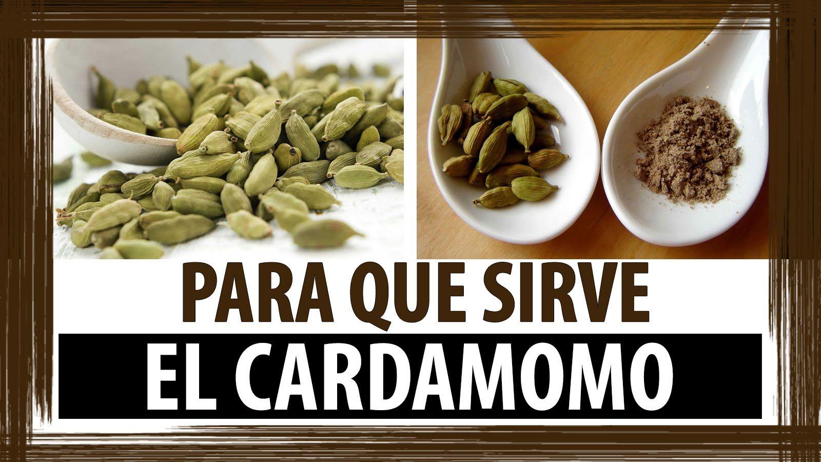 Para Que Sirve El Cardamomo Cardamomo Propiedades Medicinales Beneficios Del Cardamomo Cardamomo Propiedades Cardamomo Beneficios Cardamomo