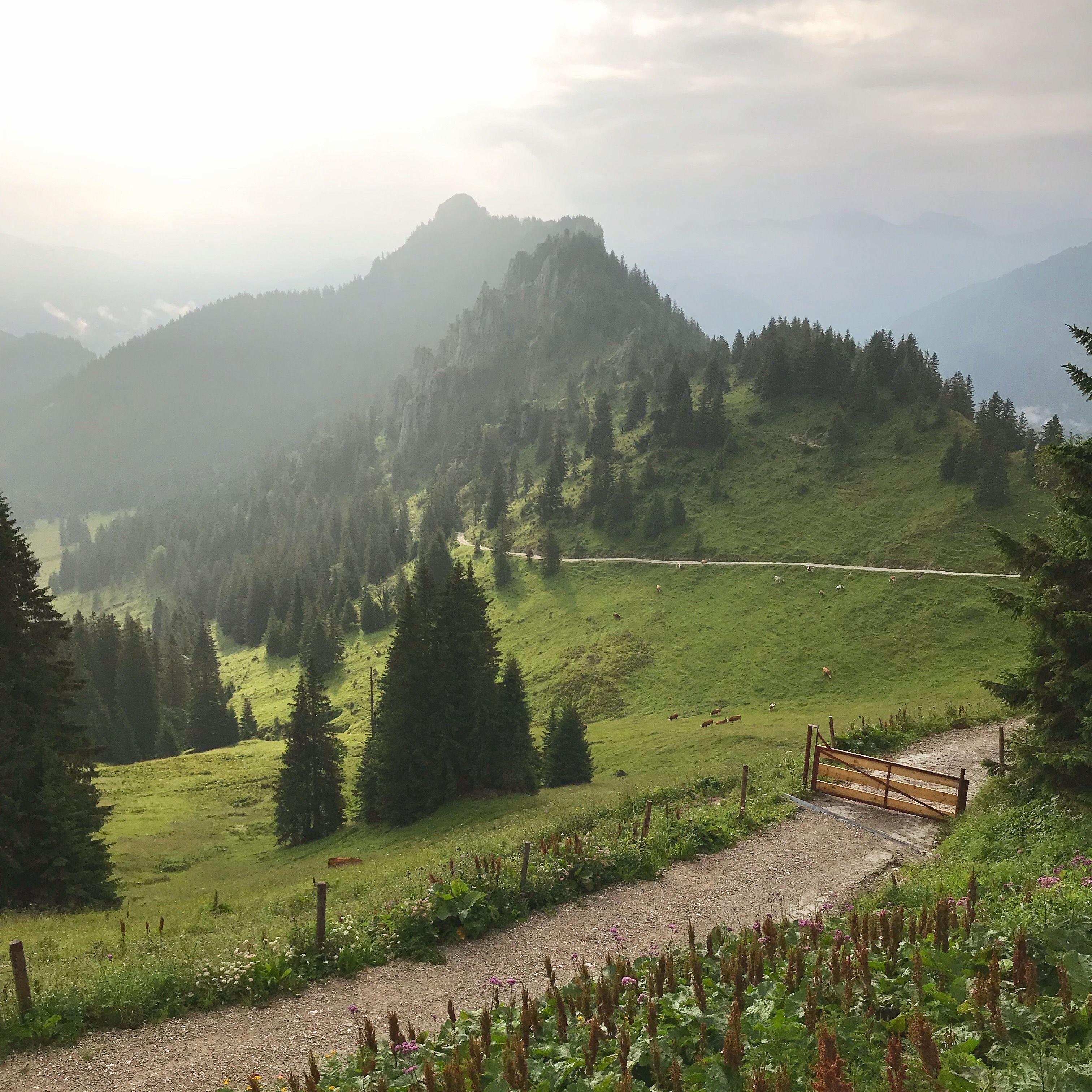 In Vier Tagen Durch Die Ammergauer Alpen Wandern Zwischen Neuschwanstein Und Oberammergau Ammergauer Alpen Alpen Neuschwanstein