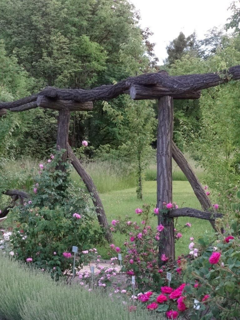 Aus Botanisch Fur Geniale Gesehen Holzstammen Naturlichen Rankhilfe Rosen Geniale Rankhilfe Fur Rosen Aus Natur In 2020 Garden Inspiration Garden Arch Trellis