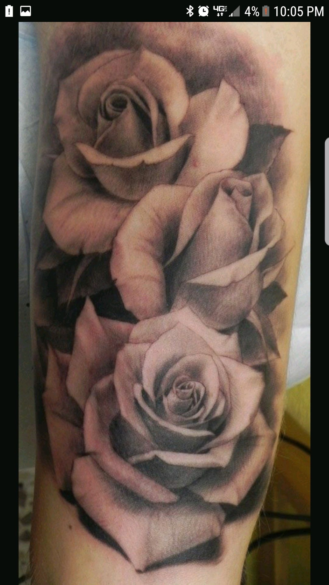 Pin by malo gee on roses pinterest