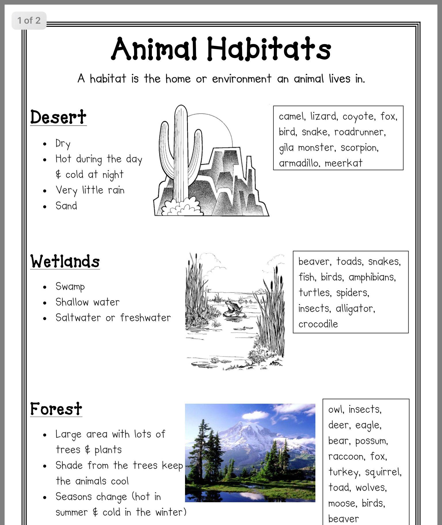hight resolution of Pin by Sharmila Edwin on Learning   Animal habitats kindergarten