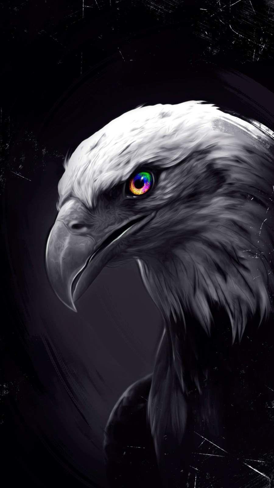 Eagle Eyes iPhone Wallpaper Eagle wallpaper, Eagle