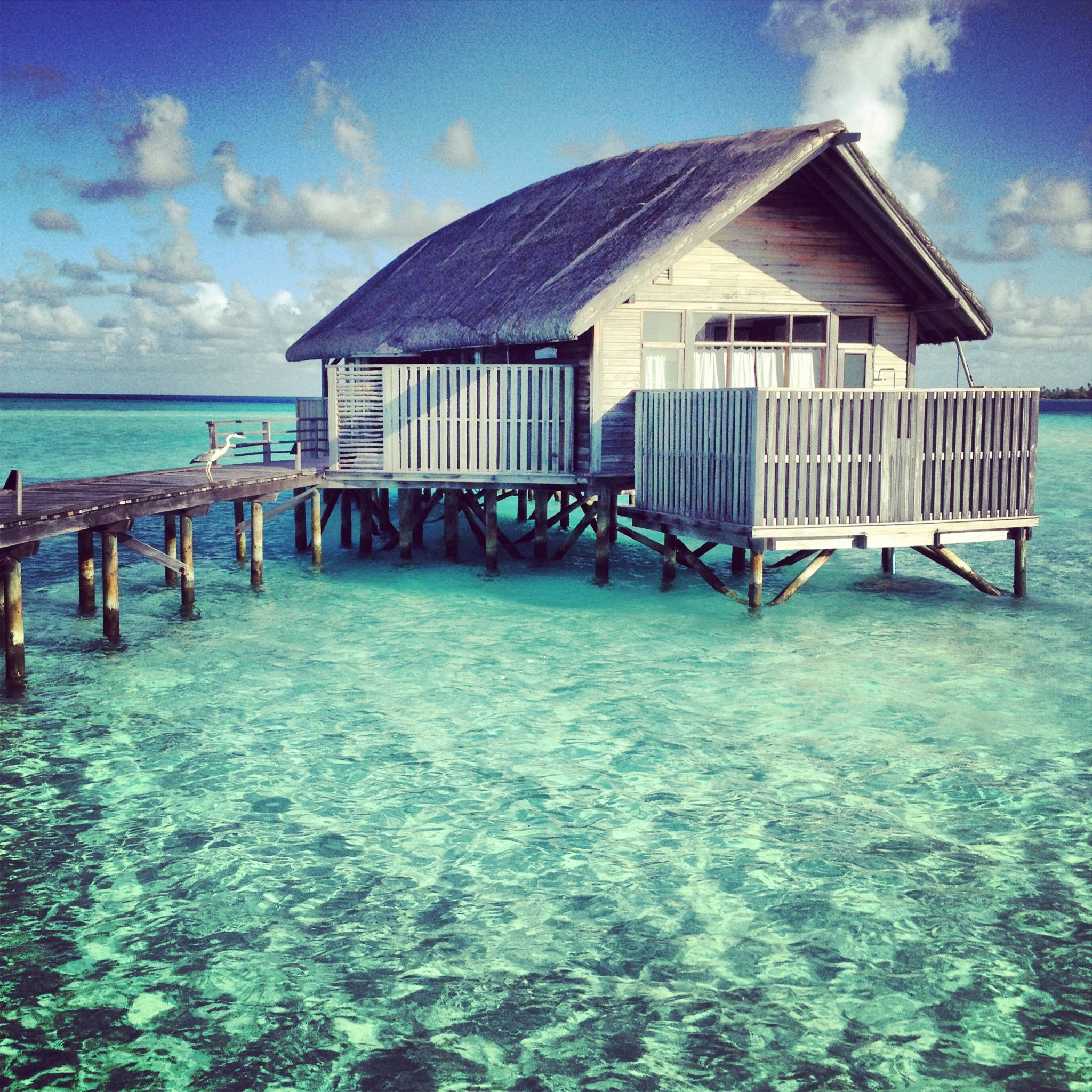 Home. Villa #3001. Cocoa Island, Maldives.