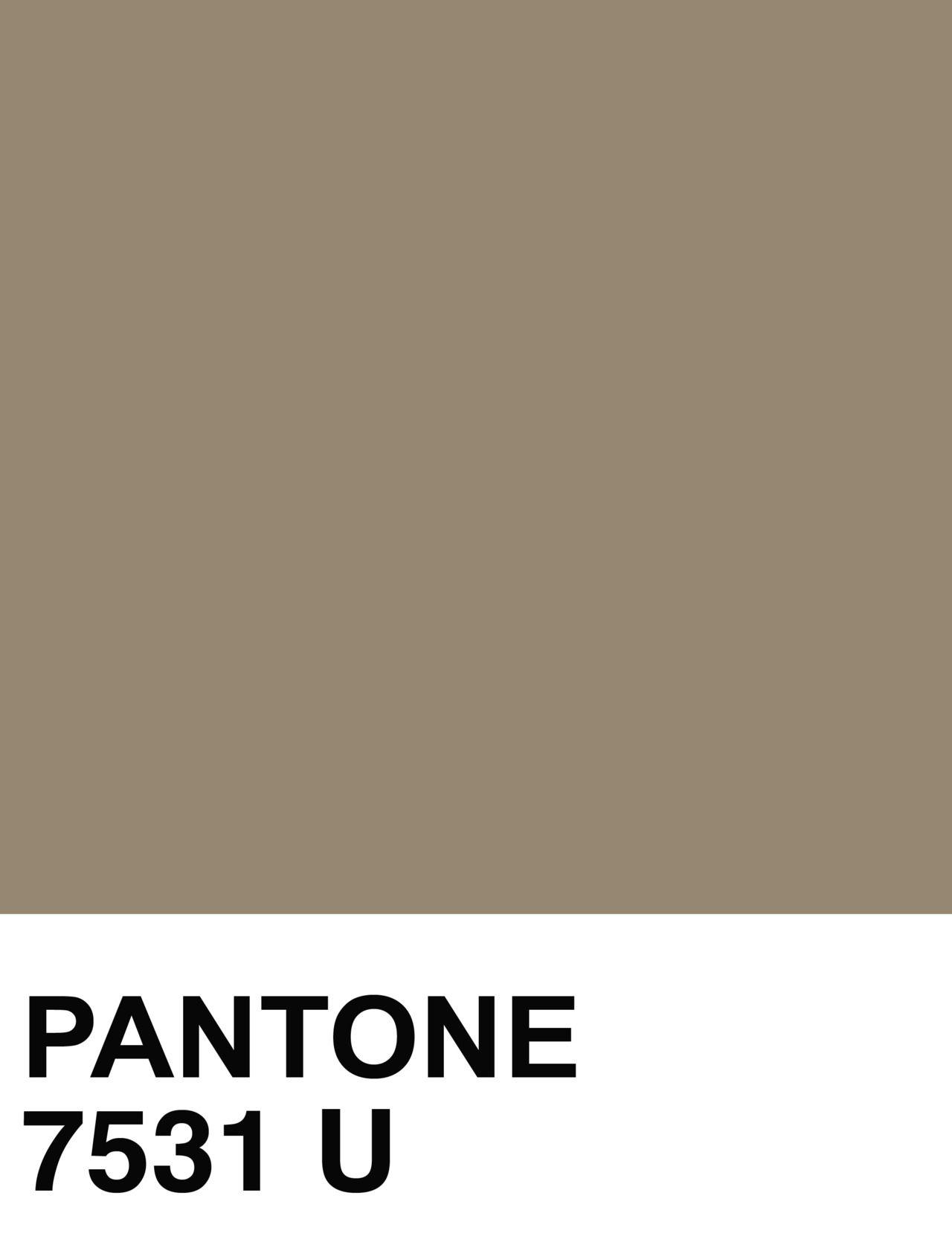 Mushroom pantone 7531