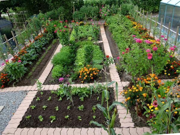 Potager en ligne dalles pour les all es jardins parcs for Deco jardin potager
