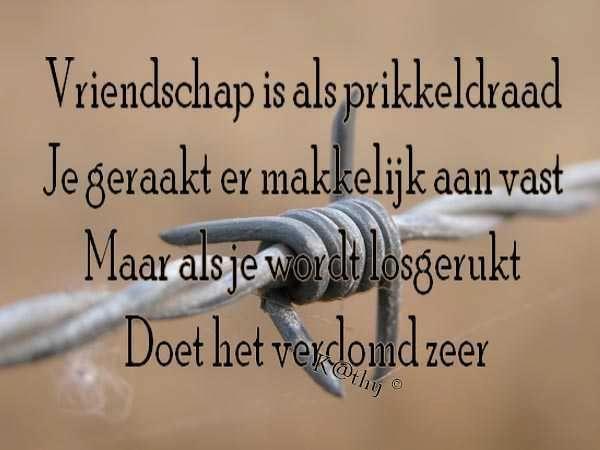 Citaten Voor Vriendschap : Afbeeldingen met citaten vriendschap en misleiding google search