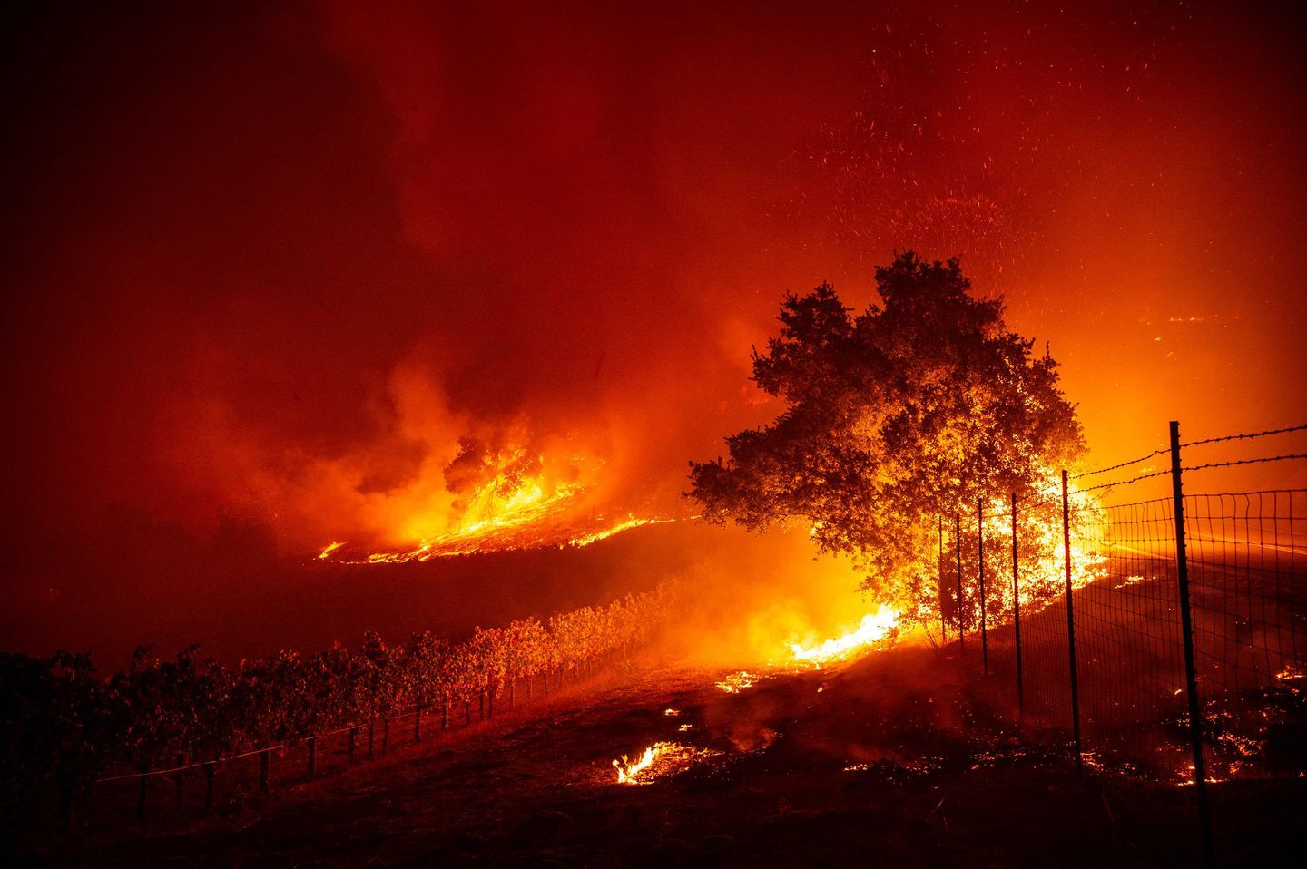 Parts Of Northern California Faced The Prospect Of New Infernos As Mandatory Evacuations For The Kincad California Wildfires Wine Country California California