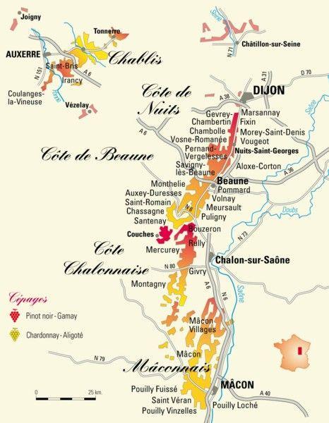Carte Bourgogne Blanc.La Carte Des Vignobles De Bourgogne Pinard Caves En 2019 Vin