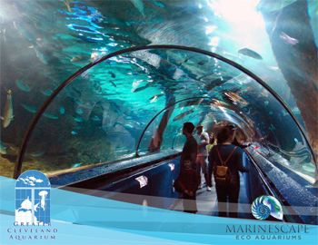 Love This Pic Of The New Greater Cleveland Aquarium Cool