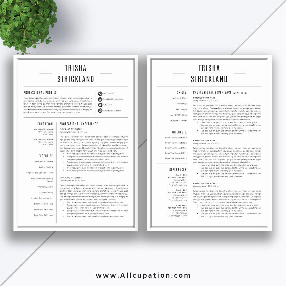 2 Page Resume format Awesome Professional Resume Template